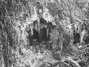 Photograph of entrance to East Caves