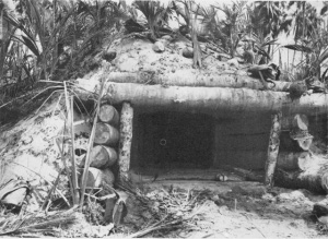 Photograph of 75mm bunker at Cape Torokina