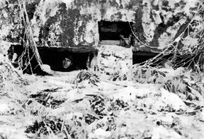 Photograph of captured Japanese pillbox