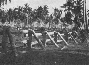 Photograph of Japanese antitank barrier