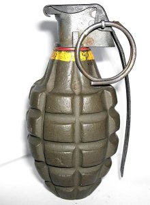 Photograph and diagram of U.S. M11 grenade