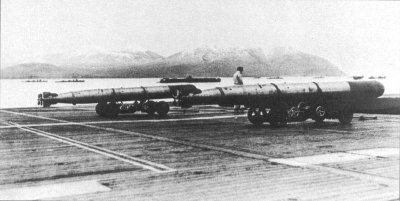 Photograph of Type 91 torpedoes