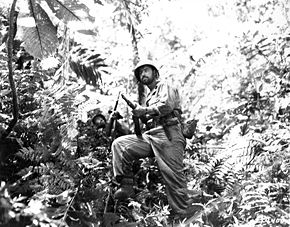 Photograph of Army troops moving through the jungle on New Georgia