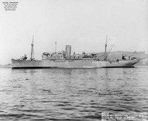 Photograph of USS Mizar