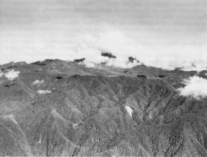 Photograph of Owen Stanley Mountains
