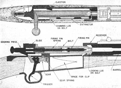 Diagraph of action of Springfield rifle