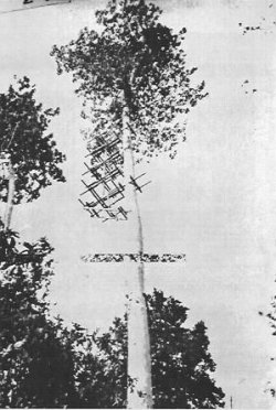 Photograph of Taichi-6 radar transmitter antenna
