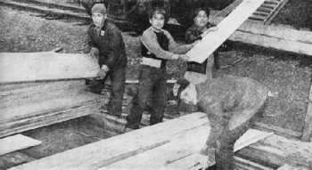 Photograph of native Americans loading timber for the Navy